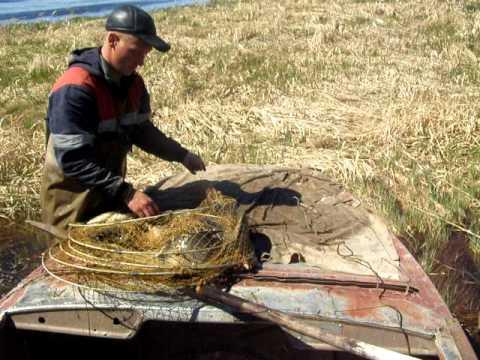 купить фитили для рыбалки