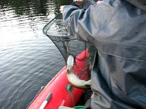 как ловить щуку на плещеевом озере