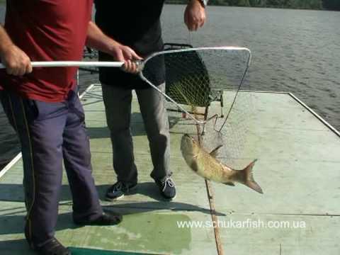 ловля рыбы в синявском