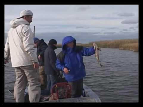 рыбалка в россии тесты