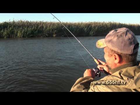 все о рыбалке передача