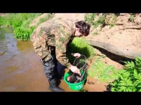 фидер на реке обучающее видео