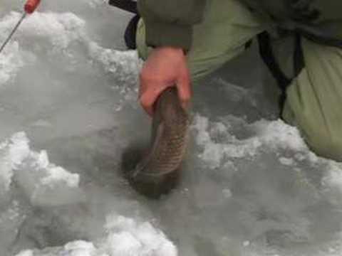 ловля рыбы на голубых озерах в красном лимане