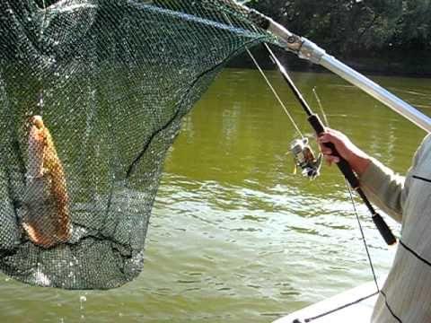 базы рыболовные в белоомуте