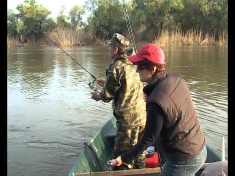 рыбалка на волге ловля воблы