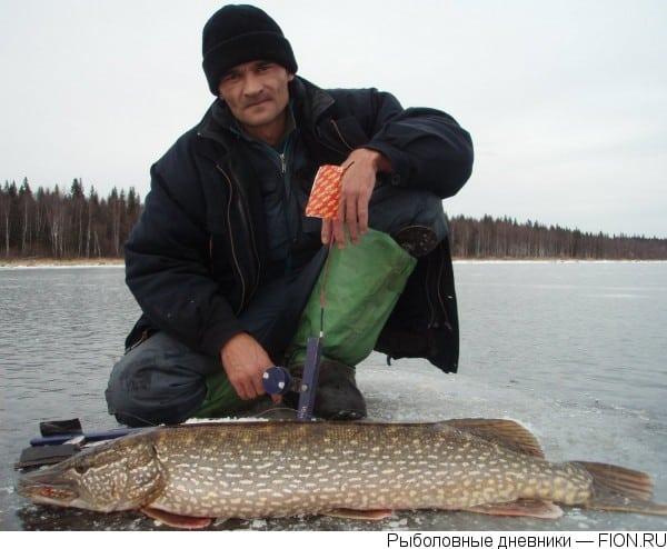 рыбалка на жерлицы в кировской области