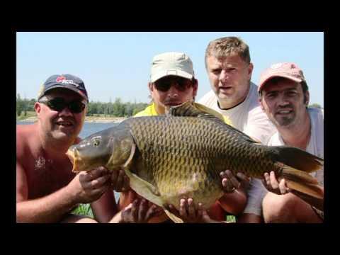 рыбалка марьевка харьковская