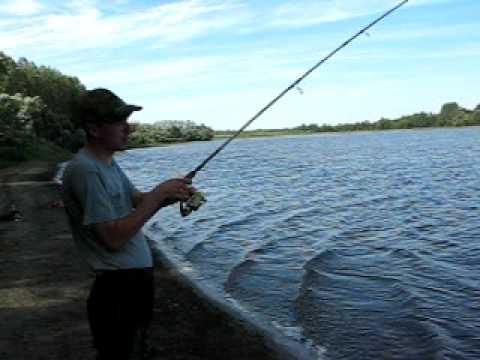 рыбалка в курской области на карпа