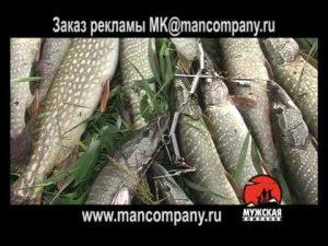 приманка fishhungry отзывы