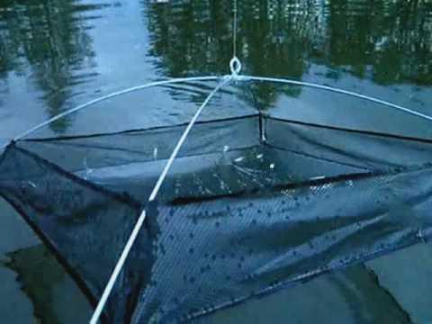 ловля окуня на живца с лодки