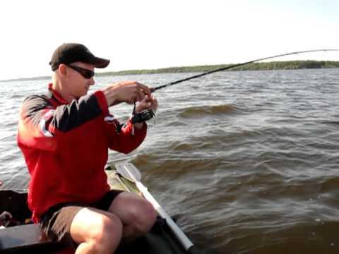 ловля судака на вилейке видео