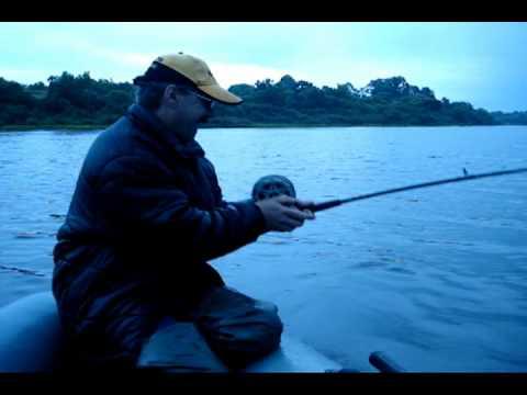 рыбалка в белоруссии на двине