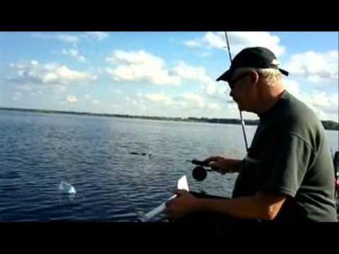 ловля судака на средней волге летом