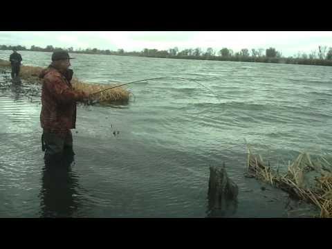 ловля рыбы на сылве