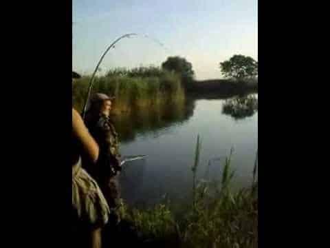 городищенский канал рыбалка