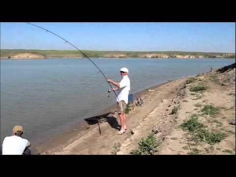 рыбалка в алматы в марте