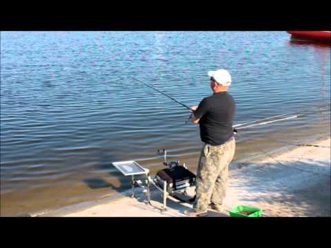 рыбалка на поплавочную удочку ютуб