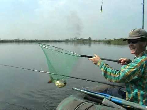 прогноз клева крылатское москва река