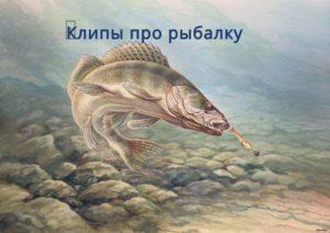 Клипы про рыбалку